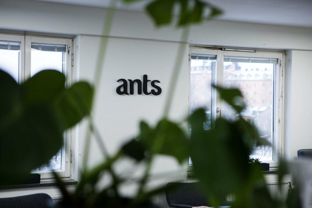 IT-rekrytering har länge varit Ants Tech Recruiters specialitet.